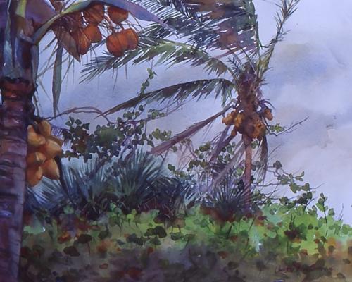 Coconuts and Sea Grapes